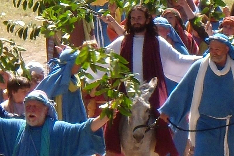 Jesus donkey 3